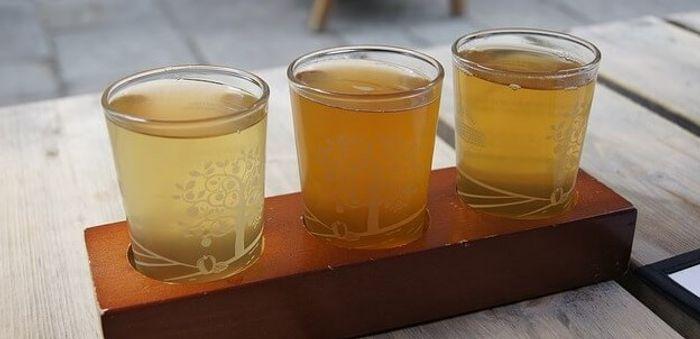 Brindemos por el próximo viaje a Asturias todos juntos.