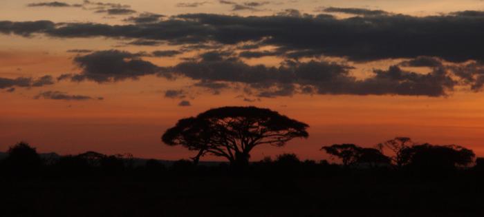 Atardecer en el PN Amboseli