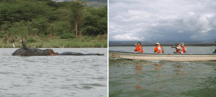En el lago Naivasha no te pierdas esta aventura. Es una excursión inolvidable