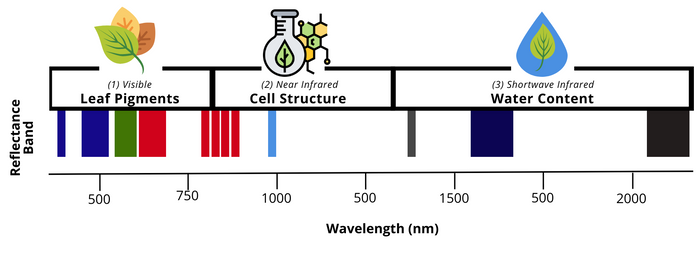 Example of different reflectance bands available at varying wavelengths. Top row depicts the corresponding plant health insights.