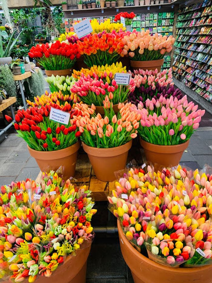 Mercado de las flores de Ámstedam y los típicos tulipanes.