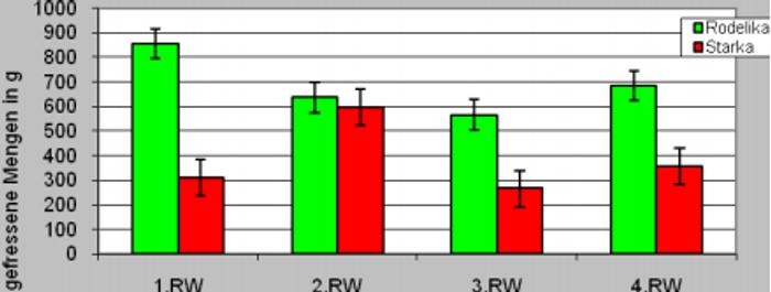 Graphique 1 : consommation des différentes variétés de carotte sur les 4 jours de test.<br>La variété Rodelika (variété population en vert) a été de manière significative plus consommée que la variété hybride