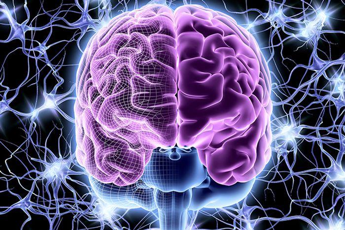 Нейропсихологія - це наука про мозкові організації психічних процесів.  Вона вивчає, що відбувається в головному мозку, коли ми говоримо, думаємо, відчуваємо, діємо, поводимося тим чи іншим чином.  Нейропсихологія допомагає зрозуміти і піддати аналізу глибинні механізми індивідуальних особливостей людини, обдарованості або відставанні в розвитку, особливого або спотвореного сприйняття навколишнього світу, проблем в світогляді і поведінці