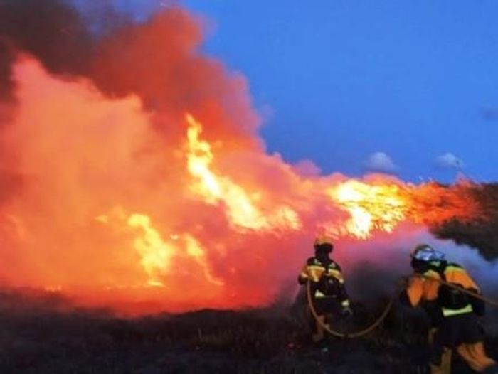 Пожарные тушат огонь в заповеднике Альбуфера. фото