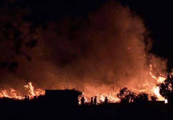 Пожар на севере острова Майорка в районе заповедника Альбуфера.Фото